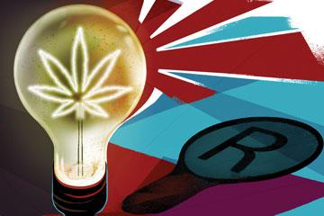 Protecting cannabis IP